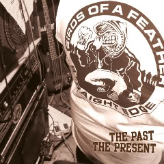 "BIRDS OF A FEATHER ""The Past The Present"" LP + Book (1st press)"