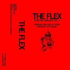 "THE FLEX ""Flexual healing vol 7"" CS"